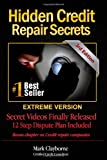 51c5c66jg%2BL. SL160  Hidden Credit Repair Secrets: 3rd Edition