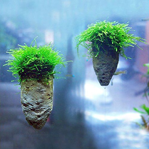 Avatar Pumice Stone Aquarium Decoration Rock