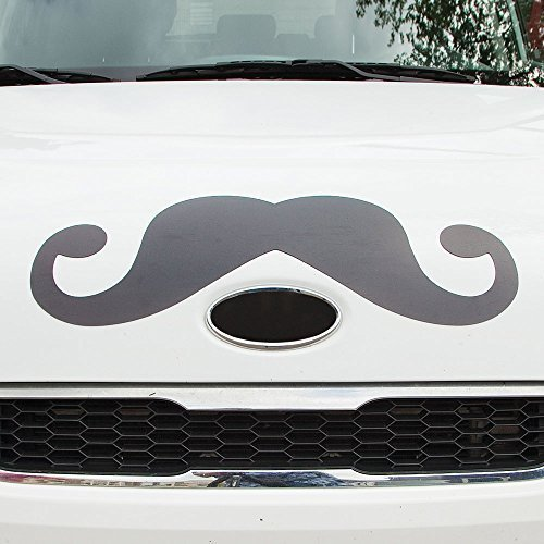 Bits and Pieces - Funny Mustache Magnet - Perfect for Any Large Metal Object - Cars, Refrigerators, Garage Doors