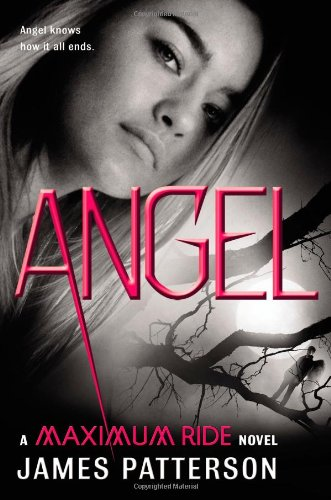 Cover of Angel: A Maximum Ride Novel