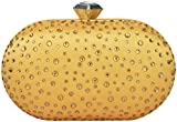 Novelty Bags Women's Clutch (Gold, NOVELTY BAGS_49)