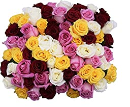 50 Mother\'s Day Farm Fresh Farmers Choice Roses Bouquet By JustFreshRoses | Long Stem Fresh Farmers Choice Rose Delivery | Farm Fresh Flowers