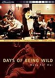 echange, troc Days of Being Wild [Import allemand]