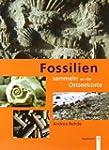 Fossilien sammeln an der Ostseek�ste:...
