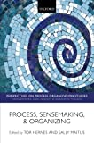 img - for Process, Sensemaking, and Organizing (Perspectives on Process Organization Studies) by Hernes Tor Maitlis Sally (2012-07-13) Paperback book / textbook / text book
