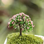 Helper007 Miniature Plants Tree Fairy...
