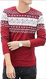 【Wild Cats】メンズ 長袖Tシャツ ロンT ラウンドネック 綿100% コットン カジュアル かっこいい かわいい トップス 人気 エコバッグ付き