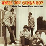 Where You Gonna Go: Motor City Garage Bands