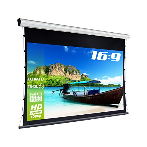 'eSmart Germany Professional 3D Canvas Tatenso Silver | Total Width (Tension) | Image Area 221x 125cm (100); 16: 9| Includes Radio Remote Control Model 2016