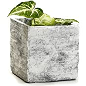 Square Cement Pot With A Rough Finish