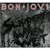Slippery When Wet - Bon Jovi (1986)