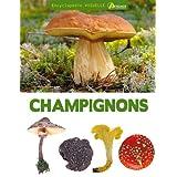 Encyclop�die visuelle des champignonspar Jean-Louis Lamaison