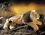 ケーセン(Kosen)【くたくたライオン】