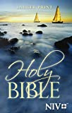 NIV Holy Bible, Larger Print