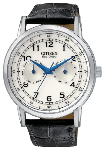 Citizen Men's AO9000-06B Eco-Drive Stainless Steel Day-Date Casual Watch