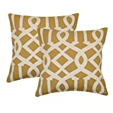 Khrysanthemum Oxford Cotton Geometrical Print Ropes Cushion Cover (Set Of 2) - 16 x 16 inches, Multi