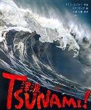津波 TSUNAMI!