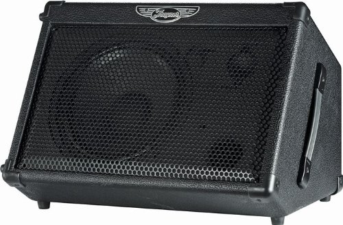 Very cheap guitar amplifiers discount traynor tvm50 50w 1x10 traynor tvm50 50w 1x10 battery powered guitar combo amp black review fandeluxe Gallery