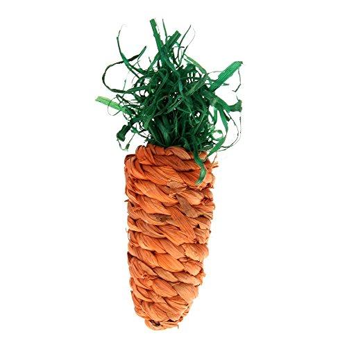 facillarmordedor-juguete-diseno-zanahoria-para-roedores-hamster-mascota