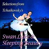 Swan Lake Swan Theme Scene