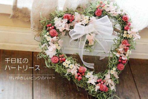 【 送料無料 】 千日紅のハートリース / リース ドライフラワー ピンク / キュート ナチュラル 結婚 ディスプレイ プレゼント 引越祝い 母の日 ホワイトデー お礼 開店祝い 誕生日