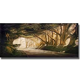 Inside a Dream by William Vanscoy Premium Stretched Canvas Art (Ready to Hang)