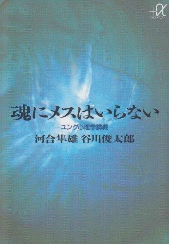 魂にメスはいらない ユング心理学講義 (講談社+α文庫)