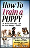 How To Train A Puppy: 24 House Training Tips for Your Puppy