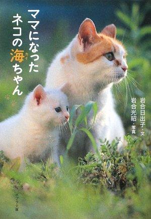 ママになったネコの海(カイ)ちゃん