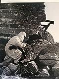 Red Army Resurgent (World War II)