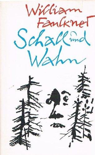 schall-und-wahn-roman