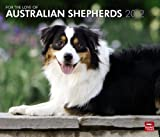 For the Love of Australian Shepherds 2012 Calendar