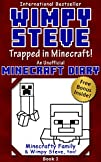 Minecraft Diary: Wimpy Steve Book 1:…
