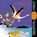 Orchids & Moonbeams: The Fantastic Voyages of Jack Flanders Radio/TV Program by Meatball Fulton