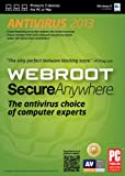 Webroot SecureAnywhere Antivirus 2013- 3 Devices