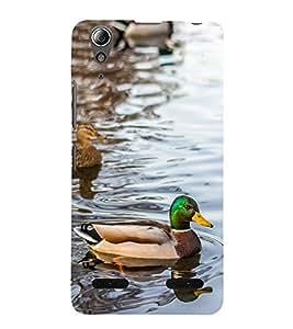 Vizagbeats Coloured Duck Back Case Cover for Lenovo A6000 Plus