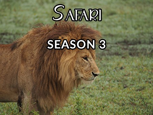 Safari - Season 3