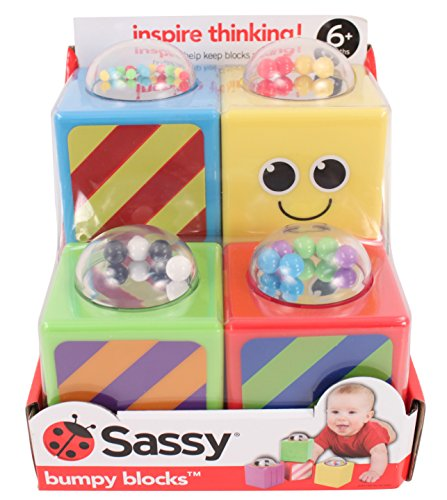 Sassy Bumpy Blocks Toy - 1