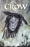 img - for THE CROW #7, August 1999 book / textbook / text book