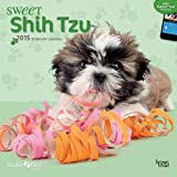 BT - Myrna Sweet Shih Tzu 2015 Wall By Myrna