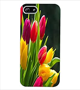 ColourCraft Beautiful Flowers Design Back Case Cover for APPLE IPHONE 5S