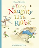 Beatrix Potter Peter Rabbit: The Tale of a Naughty Little Rabbit