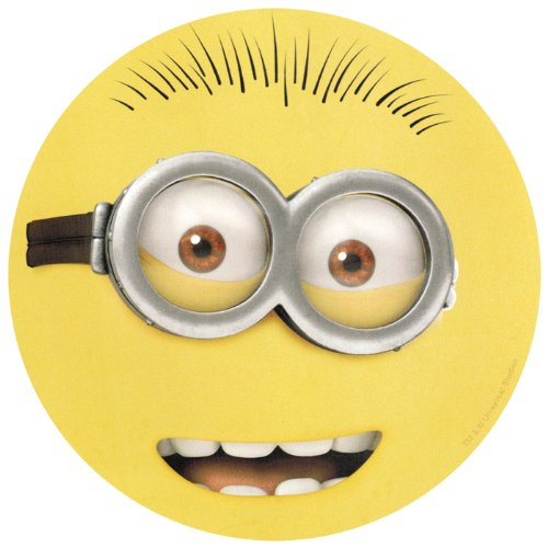 Despicable Me 2 Goggle Face 2 Eyes Car Magnet
