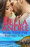 Now That I've Found You (New York Sullivans #1) (The Sullivans Book 15)