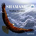 Shamanic Healing Journeys: Connecting with Spirit Speech by Virginia Harton Narrated by Virginia Harton