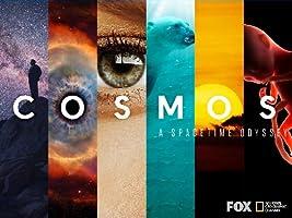 Cosmos: A Spacetime Odyssey Season 1 [HD]