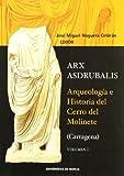 Arx asdrubalis.: ARQUEOLOGIA E HISTORIA DEL CERRO DEL MOLINETE (CARTAGENA)