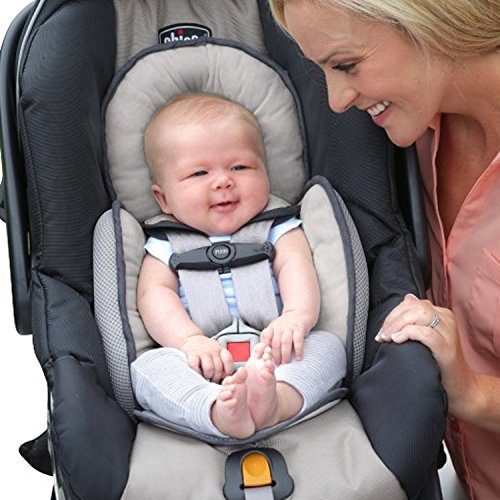 Chicco Infant Head Body Support Pillow Car Seat & Seat Protector Stroller Cushion - Ivory / Gray (Infant Head Insert compare prices)