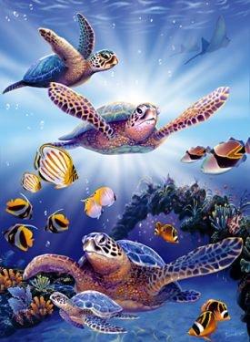 Cheap E&L The Art of Steve Sundram – Turtles in Light 500 Piece Jigsaw Puzzle (B002IR3K1Y)