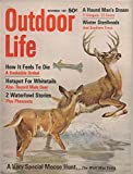 img - for Outdoor Life (incorporating: Leisure Living and The Fisherman), vol. 140, no. 5 (November 1967): How It Feels to Die: A Snakebite Ordeal; Hotspot for Whitetails; Special Moose Hunt (Wolf Was Extra) book / textbook / text book